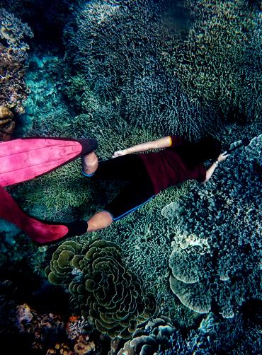snorkeling22